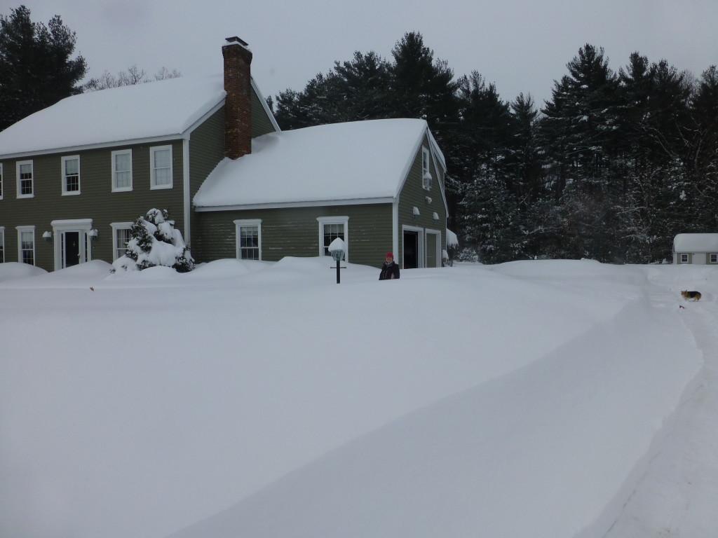 Winter New England 2015